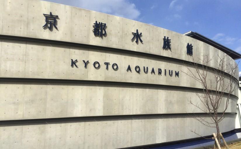 京都水族館に行ってきた。